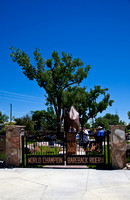 The double gates to the Chris LeDoux Memorial Park with the still covered sculpture standing between the gate and the tree.